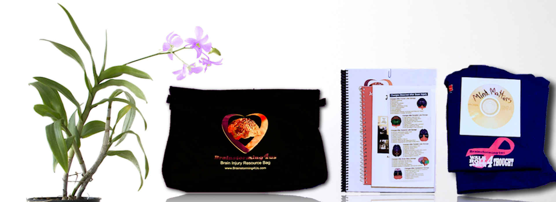 Brain Injury Resource Bags